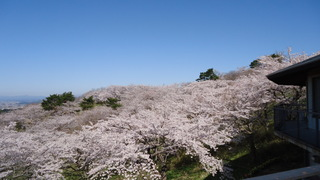 4月11日�B.JPG